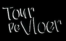 Logo Tour de Vloer
